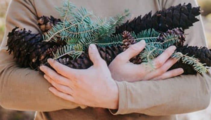 Natural Healing and Natural Treatment